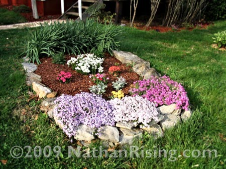 One of our flower beds